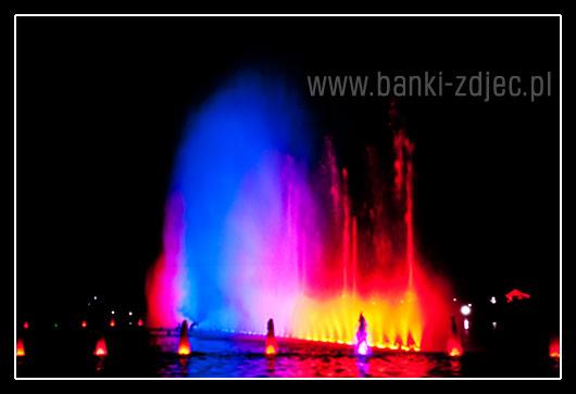 fontanna multimedialna wrocław pergola