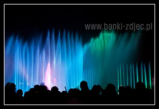 fontanna multimedialna wrocław